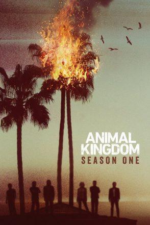 ANIMAL KINGDOM SEASON 1