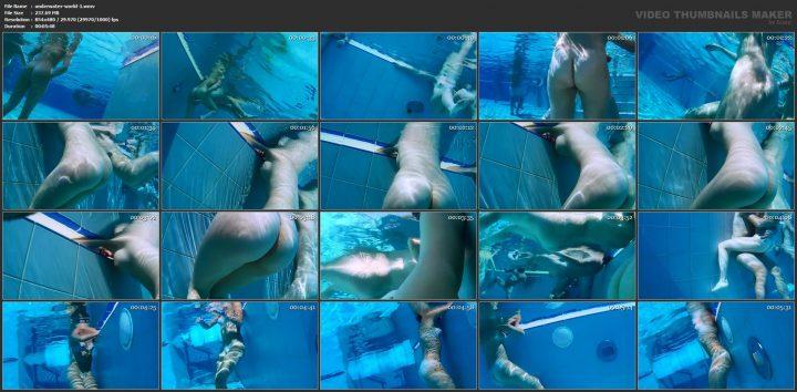 Underwater world vol.1