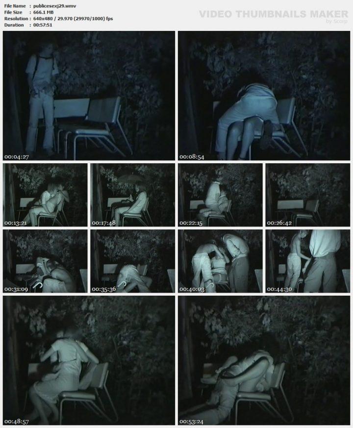 Japanise Public Sex 29