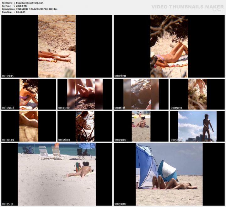 Papa Nude Beach vol.1