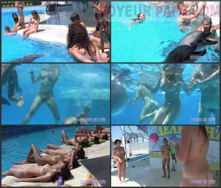 Family Pure Nudism Candid-HD-Amazing Dolphin Encounter.vol 1